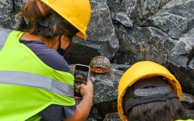 Paddock Pointe Stream Restoration Initiative